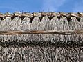 Thatched roofs z05.JPG