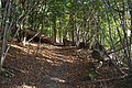 The Greensand Way on Brockhoult Mount - geograph.org.uk - 1549179.jpg