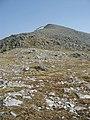 The NW ridge of Carn nan Gobhar - geograph.org.uk - 170215.jpg
