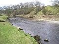 The River Wharfe below Grass Wood - geograph.org.uk - 295443.jpg