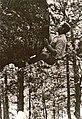 The Scab 1963.jpg