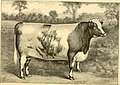 The breeds of live stock, and the principles of heredity (1887) (14780917812).jpg