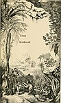 The polar and tropical worlds - a description of man and nature in the polar and equatorial regions of the globe (1874) (14591018729).jpg
