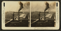 The stock yards and packing houses of Chicago - one of the world's greatest industries, from Robert N. Dennis collection of stereoscopic views.png