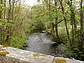 The view upstream from Taw Green Bridge on the river Taw - geograph.org.uk - 1853330.jpg
