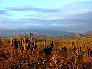 El Pescadero, Baja California Sur town in Baja California Sur, Mexico