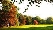 The Tiergarten park in October