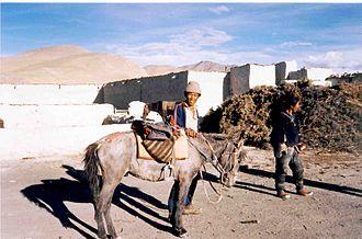 Tingri (town) - Tingri Dzong, 1993