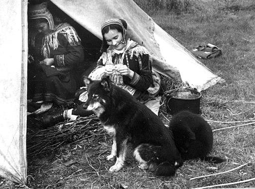 To kvinner i en teltåpning bearbeider skinn. en hund med hvalp i forgrunnen - Norsk folkemuseum - NF.13714-010