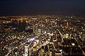 Tokyo aerial night.jpg