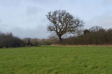 Tolworth Court Farm Fields 14.JPG