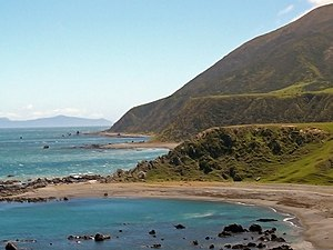 Raised beach - Quaternary marine terraces at Tongue Point, New Zealand