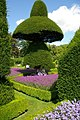 Topiary Garden at Levens Hall - geograph.org.uk - 335263.jpg