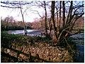 Totnes Weir - geograph.org.uk - 27014.jpg