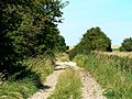 Track near the Imber Range, Salisbury Plain - geograph.org.uk - 738993.jpg