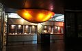Transvaal Museum-017.jpg
