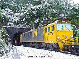 "Rail transport in New Zealand - An EF class locomotive in the Tranz Rail ""bumble-bee"" livery hauling container wagons on the North Island Main Trunk"