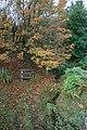 Tributary of Badger Beck - geograph.org.uk - 585177.jpg