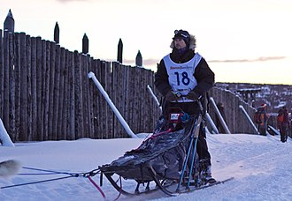 Dog sled - A musher riding a dog sled in Røros, Norway, during a sled dog race.