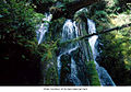 Twin Falls, Olympic National Park.jpg