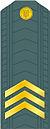 UA-SGT-GSB.jpg