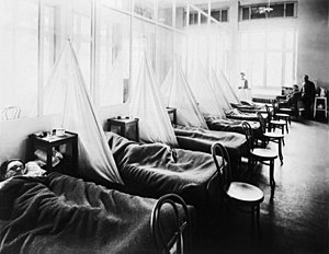 1918 flu pandemic - American Expeditionary Force victims of the flu pandemic at U.S. Army Camp Hospital no. 45 in Aix-les-Bains, France, in 1918