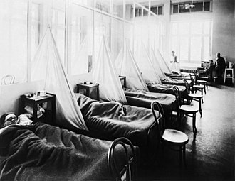 Spanish flu - American Expeditionary Force victims of the Spanish flu at U.S. Army Camp Hospital no. 45 in Aix-les-Bains, France, in 1918