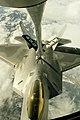 USMC-06192009-M-0474R-001.jpg