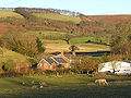 Upcott Farm with Quantocks in the background - geograph.org.uk - 105296.jpg
