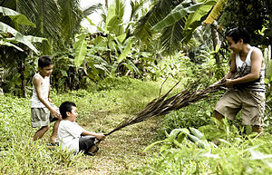 Lat - The Kampung Boy recalls Lat's childhood experiences, such as playing tarik upih pinang (game pictured) with other children.