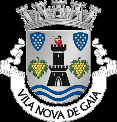 How to get to Vila Nova De Gaia with public transit - About the place