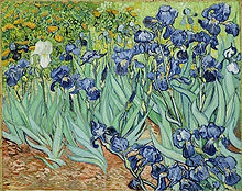 99468b6efe1951 Irises, 1889, by Vincent van Gogh