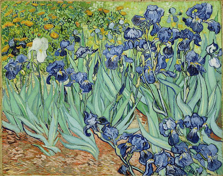 Van Gogh on Spotlight