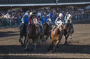 The Big Fresno Fair - Horse racing at the fair