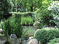 Vegetación del Jardín Japonés.jpg