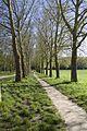 Versailles - panoramio - Patrick Nouhailler's… (39).jpg