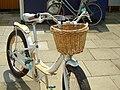 Vida Bicycle 2008 14.JPG
