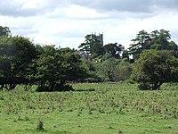 View of Bramford Speke Church from Stoke Canon - geograph.org.uk - 1771136.jpg