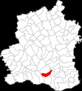Viișoara, Teleorman Commune in Teleorman, Romania