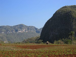Pinar del Río Province - Dome-like rounded mogotes in Viñales Valley