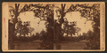 Vista from Washington's windows. Roadway to tomb from landing, from Robert N. Dennis collection of stereoscopic views.png