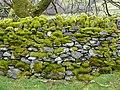 Wal Sych Dry stone wall in Ysbyty Ifan, Conwy Borough Council, Wales.jpg