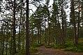 Walking trail, Inari, Finland (22) (36545352671).jpg