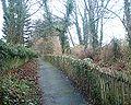 Water Lane Bridleway 26-03-06.jpg