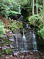 Waterfall-Campground-seneca - West Virginia - ForestWander.jpg