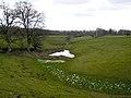 Watery Hollow Near Auchencairn - geograph.org.uk - 354747.jpg