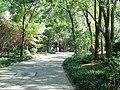 Weicheng, Weifang, Shandong, China - panoramio (110).jpg