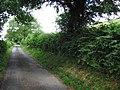Welsh lane - geograph.org.uk - 1385252.jpg