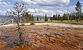 West Thumb Basin, Yellowstone National Park (7712516006).jpg