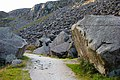 Wicklow Mountains National Park Glenealo Valley 21.JPG
